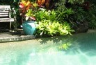 Ambrose Swimming pool landscaping 3